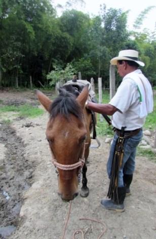 Salento, Colombia (48) (426x640)
