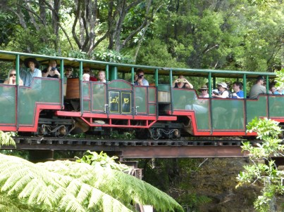 Driving Creek Railway Train