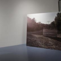 Betty Böhm: Reservat, 2017, Wallpaper Print on wooden construction, 180×240×128 cm