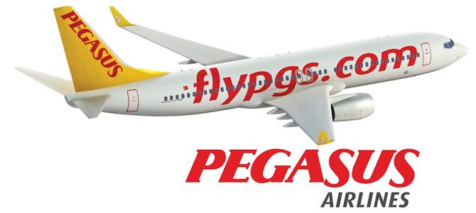 Пегасус лого