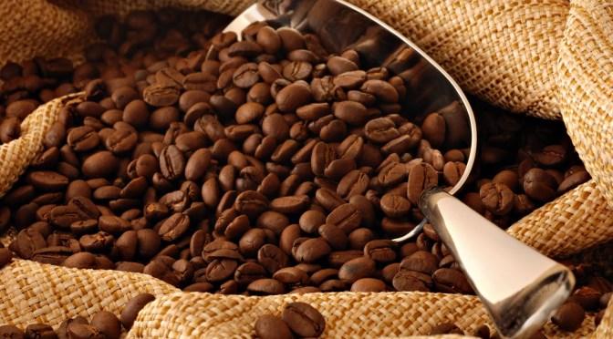 Precios del café, los más bajos de los últimos 15 años, alerta organismo