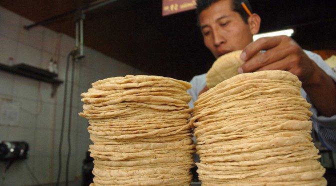 Estiman que precio de la tortilla aumentará hasta 30% por efectos del COVID-19