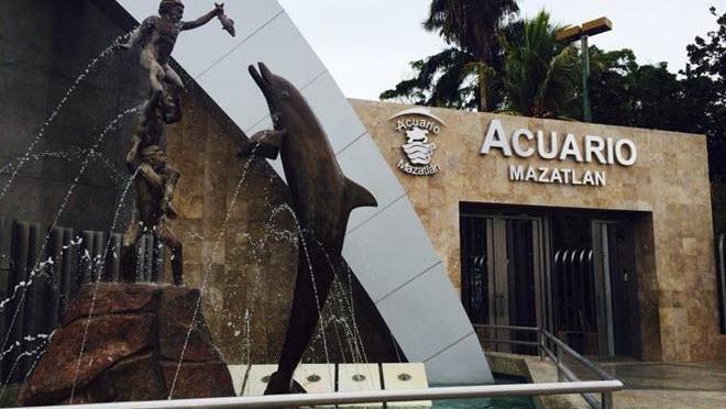 Nuevo acuario de Mazatlán será uno de los 10 más grandes del mundo