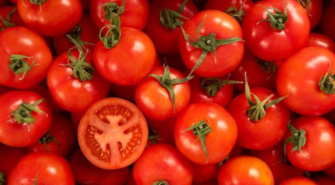 "Pronostican ""fuerte turbulencia"" para industria del tomate"
