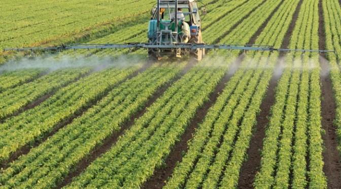 Agro mexicano impulsa cadenas de valor