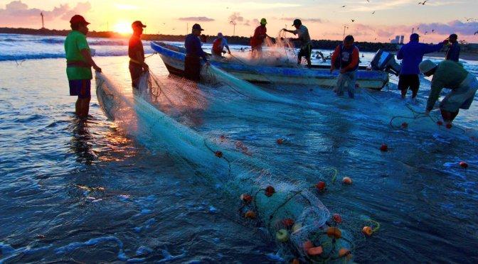 Apoyan a pescadores y acuacultores afectados por huracán Willa