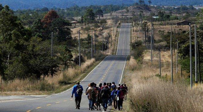 Coronavirus alcanza el tema de migración
