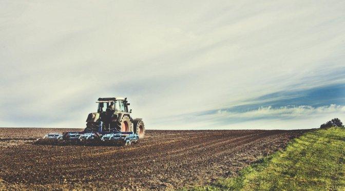 Impulsa Senasica sistemas de inocuidad en producción de alimentos