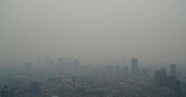 Sociedad y gobierno: contaminadores irresponsables