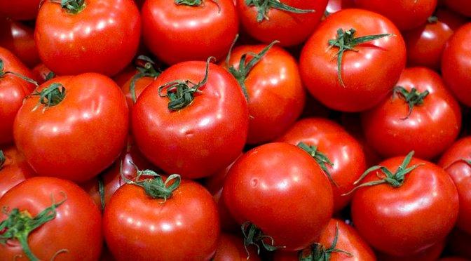 Acuerdo sobre tomate con EUA podría alcanzarse ente junio y julio