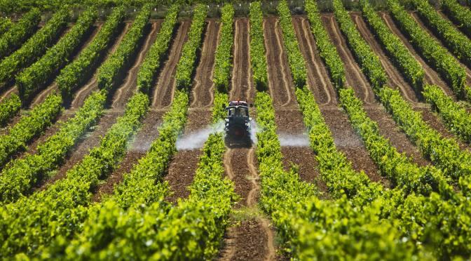 Nueva política agraria busca garantizar bienestar de familias campesinas