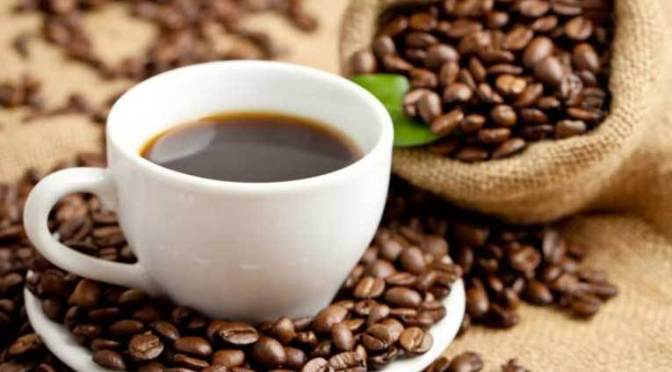 Tendencias internacionales en mundo del café serán expuestas en Palenque