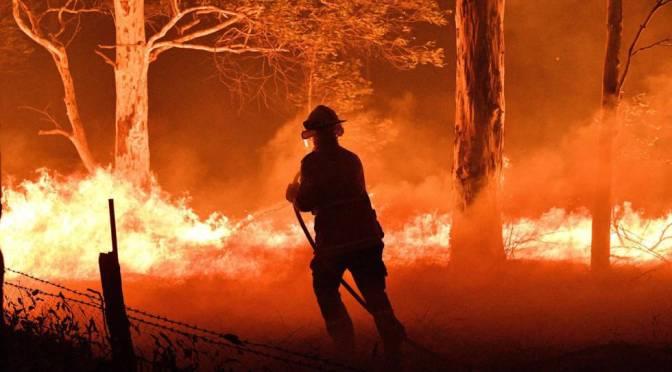 Recorta la 4T recursos contra incendios, pese a alza de 30%