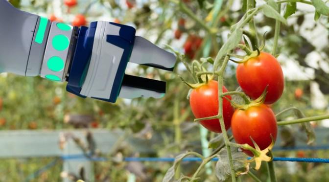 La tecnología y la solución que requiere el sector alimentario en México