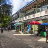 Remodelan Quinta Avenida y el Parque Fundadores en Playa de Carmen