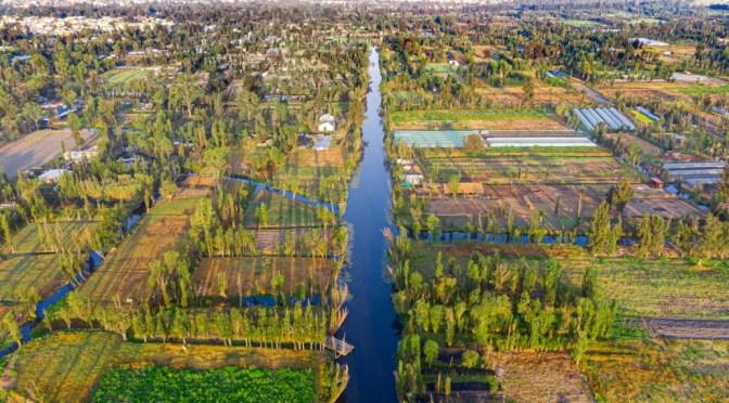 "Residentes de la CDMX limpian los ""jardines flotantes"" de la epoca azteca"