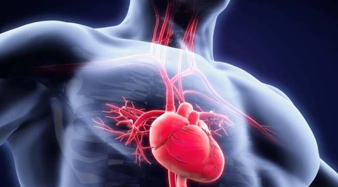 Cardiopatías congénitas, una condición que debe tener seguimiento médico de por vida