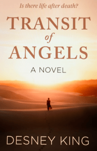 Book Cover: Transit of Angels