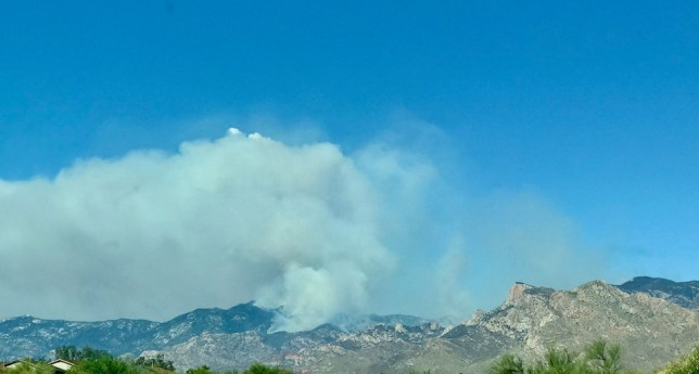 View of Bighorn Fire in the Catalina Range on June 16, 2020