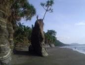 Pinnacle on beach