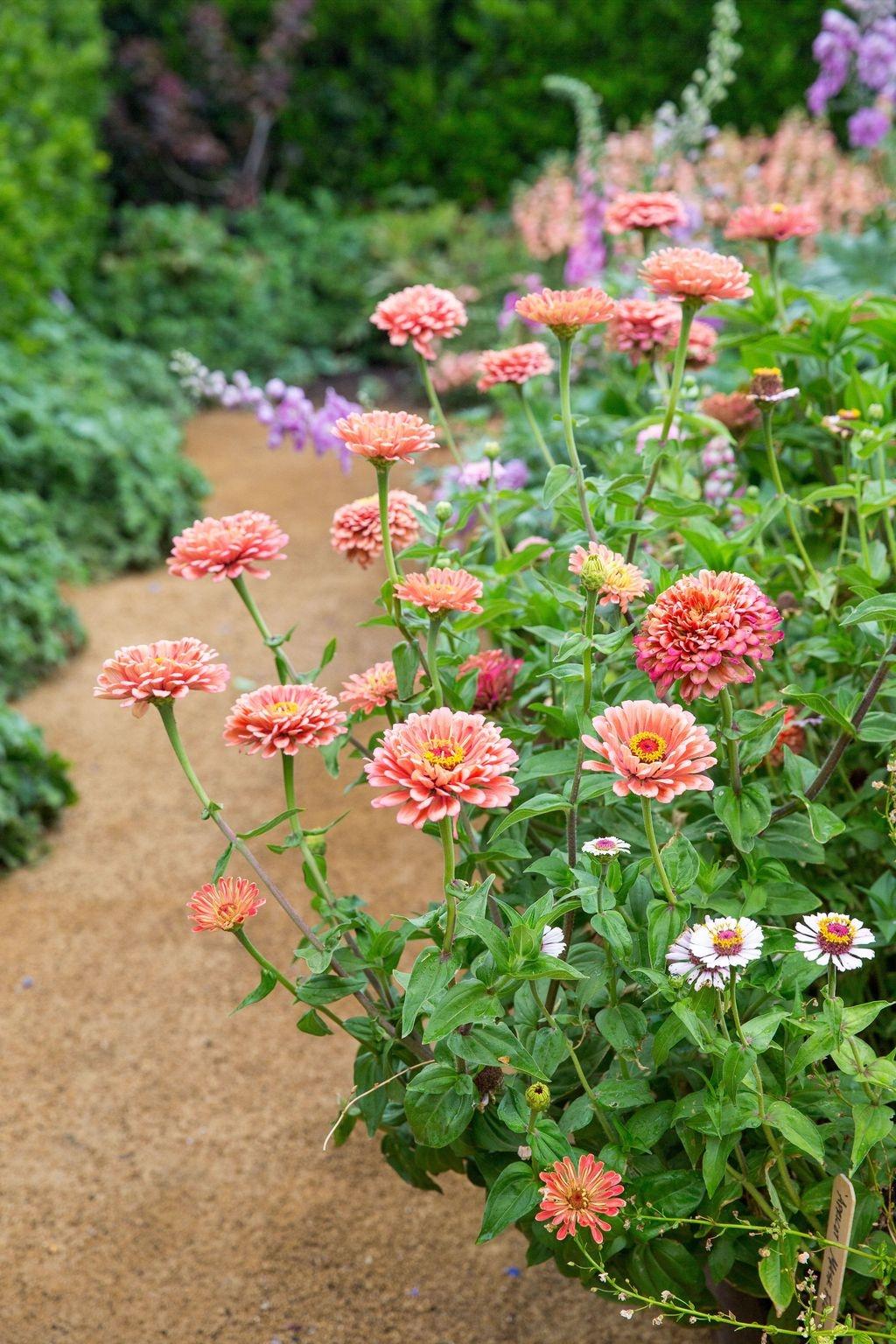 Beautiful Flower Garden Design Ideas 20
