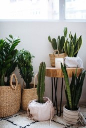 Stunning Small Planters Ideas To Maximize Your Interior Design 10