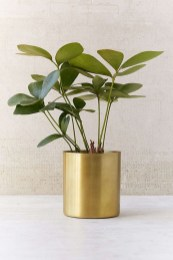 Stunning Small Planters Ideas To Maximize Your Interior Design 46