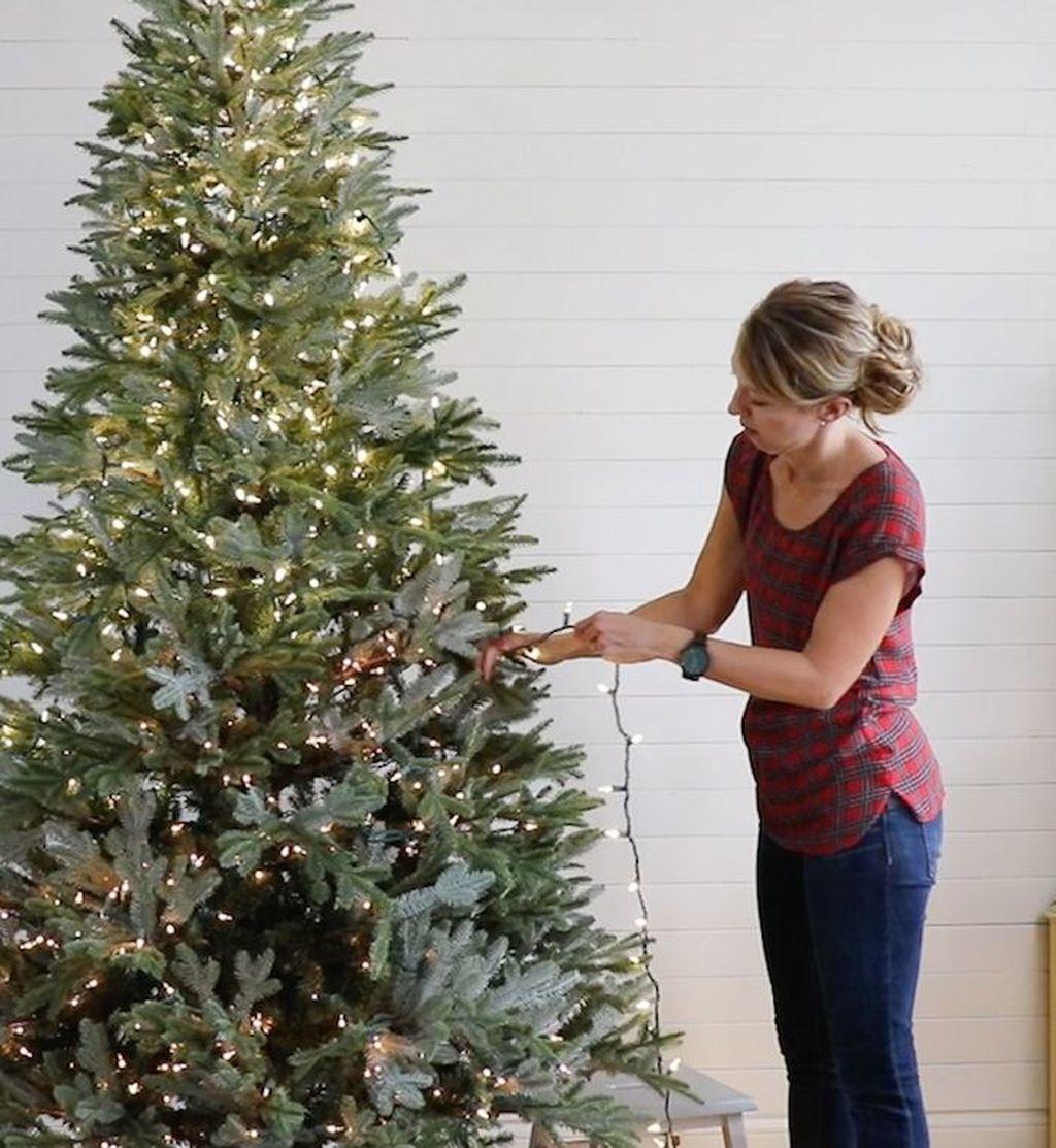 Amazing Christmas Lights Tree Decoration Ideas 42