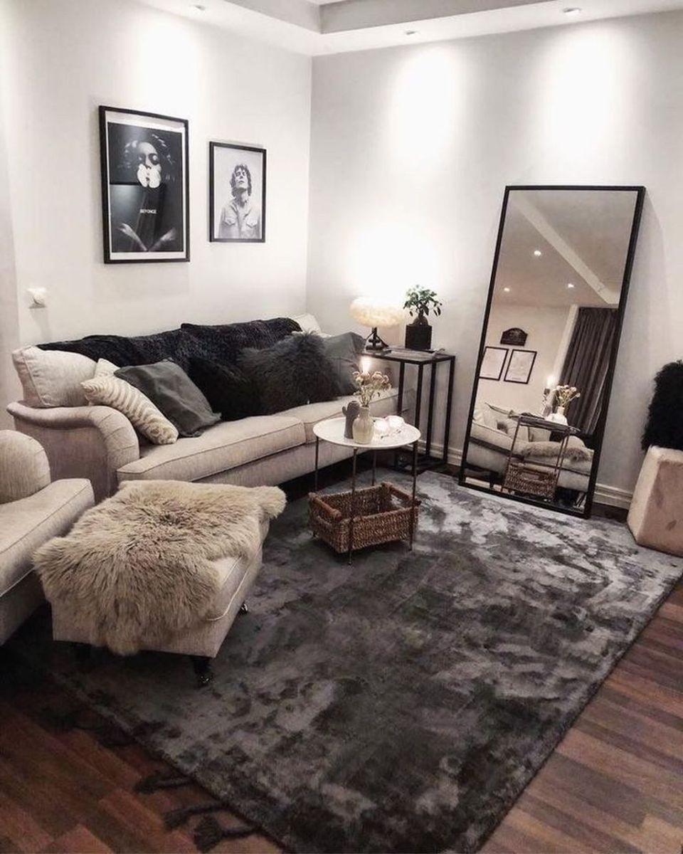The Best Apartment Living Room Decor Ideas On A Budget 11