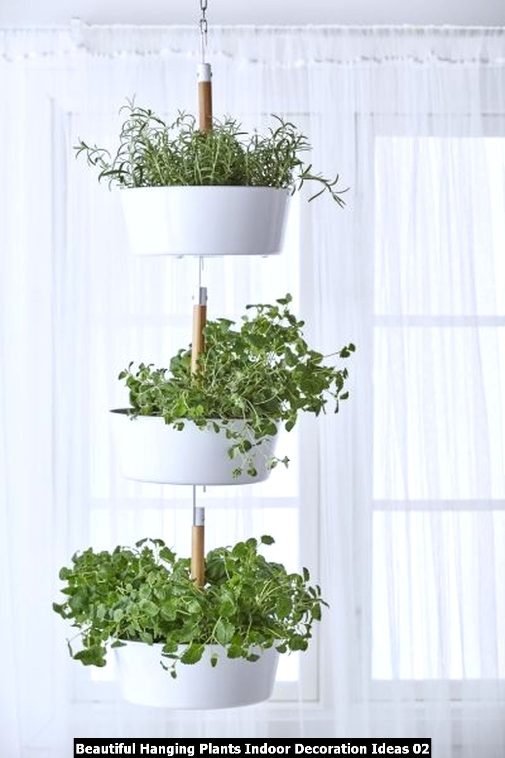 Beautiful Hanging Plants Indoor Decoration Ideas 02