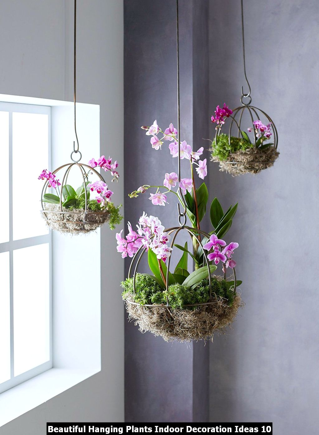 Beautiful Hanging Plants Indoor Decoration Ideas 10