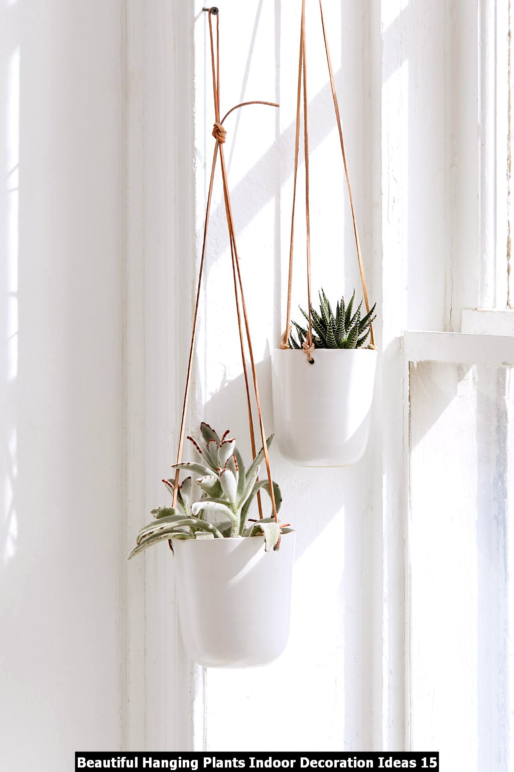 Beautiful Hanging Plants Indoor Decoration Ideas 15