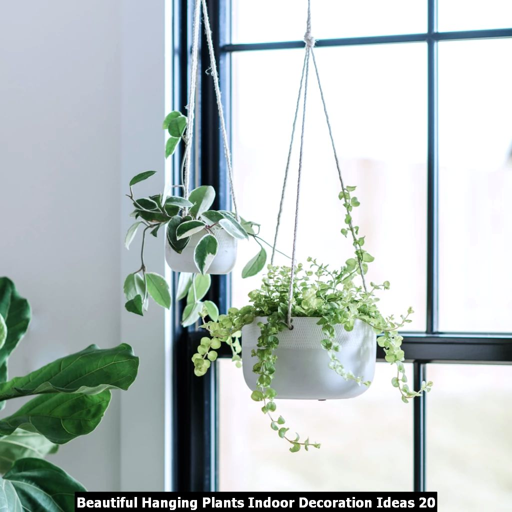 Beautiful Hanging Plants Indoor Decoration Ideas 20