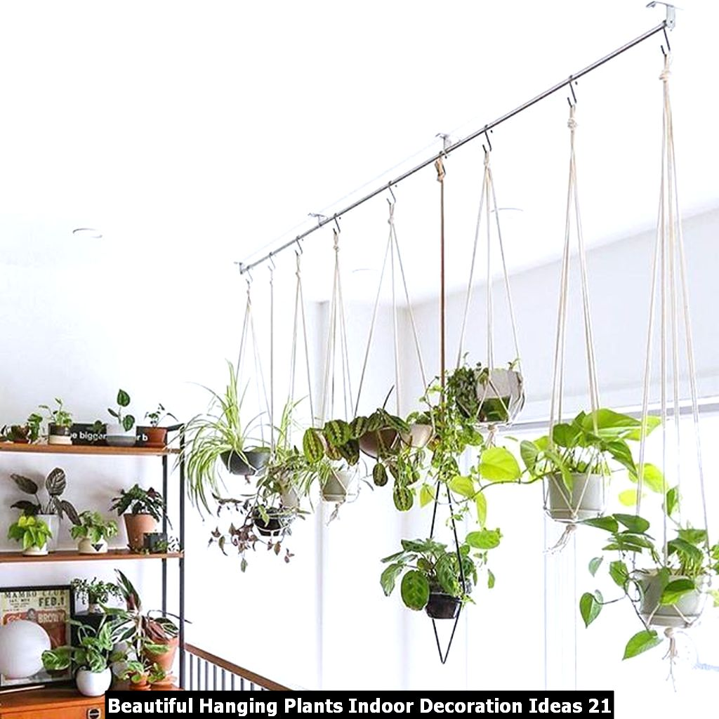 Beautiful Hanging Plants Indoor Decoration Ideas 21