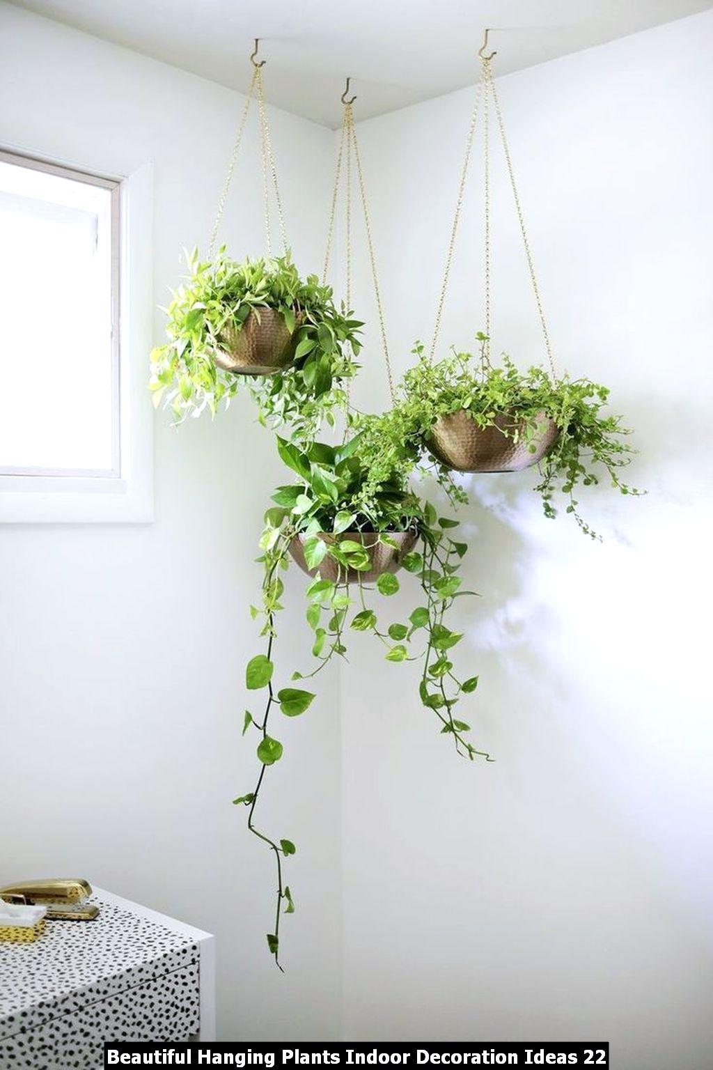 Beautiful Hanging Plants Indoor Decoration Ideas 22