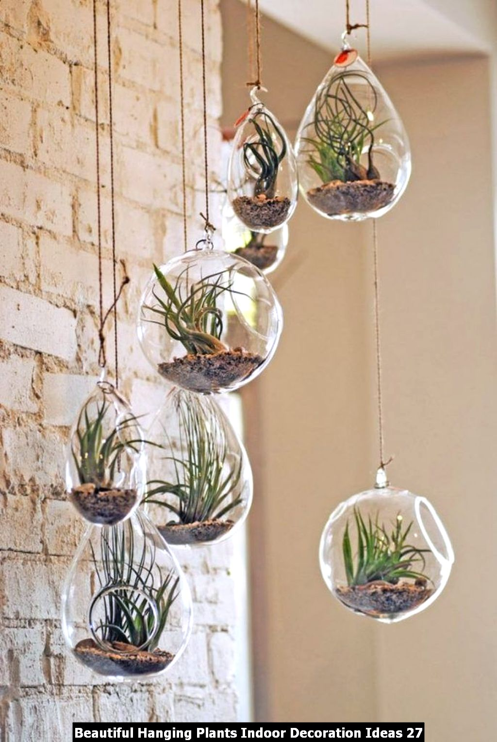 Beautiful Hanging Plants Indoor Decoration Ideas 27