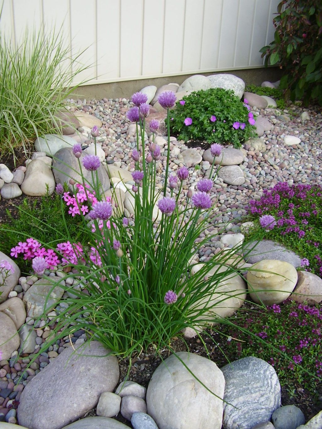 Best Rock Garden Landscaping Ideas You Should Try 04