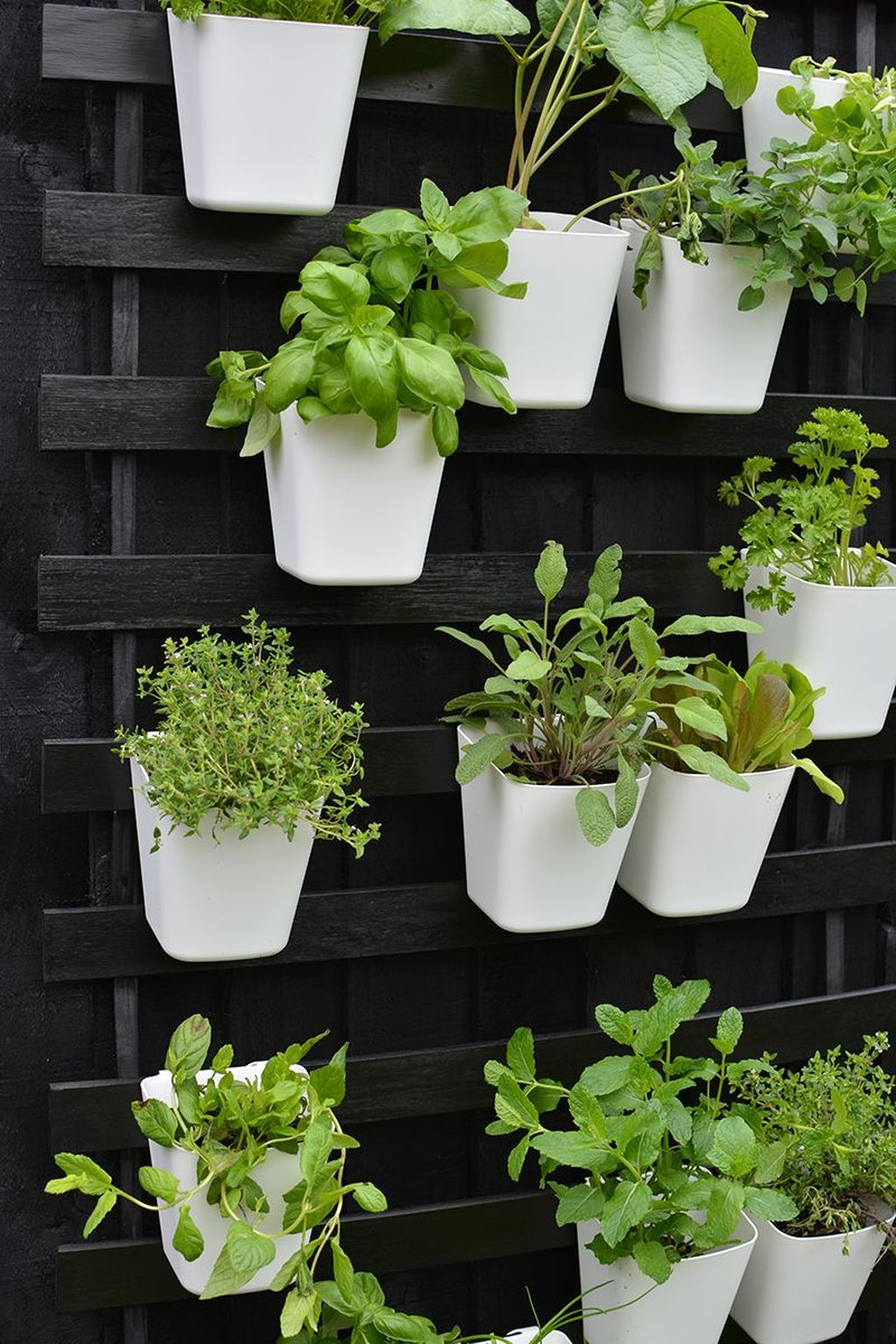 Popular Vertical Garden Wall For Outdoors Decor 09