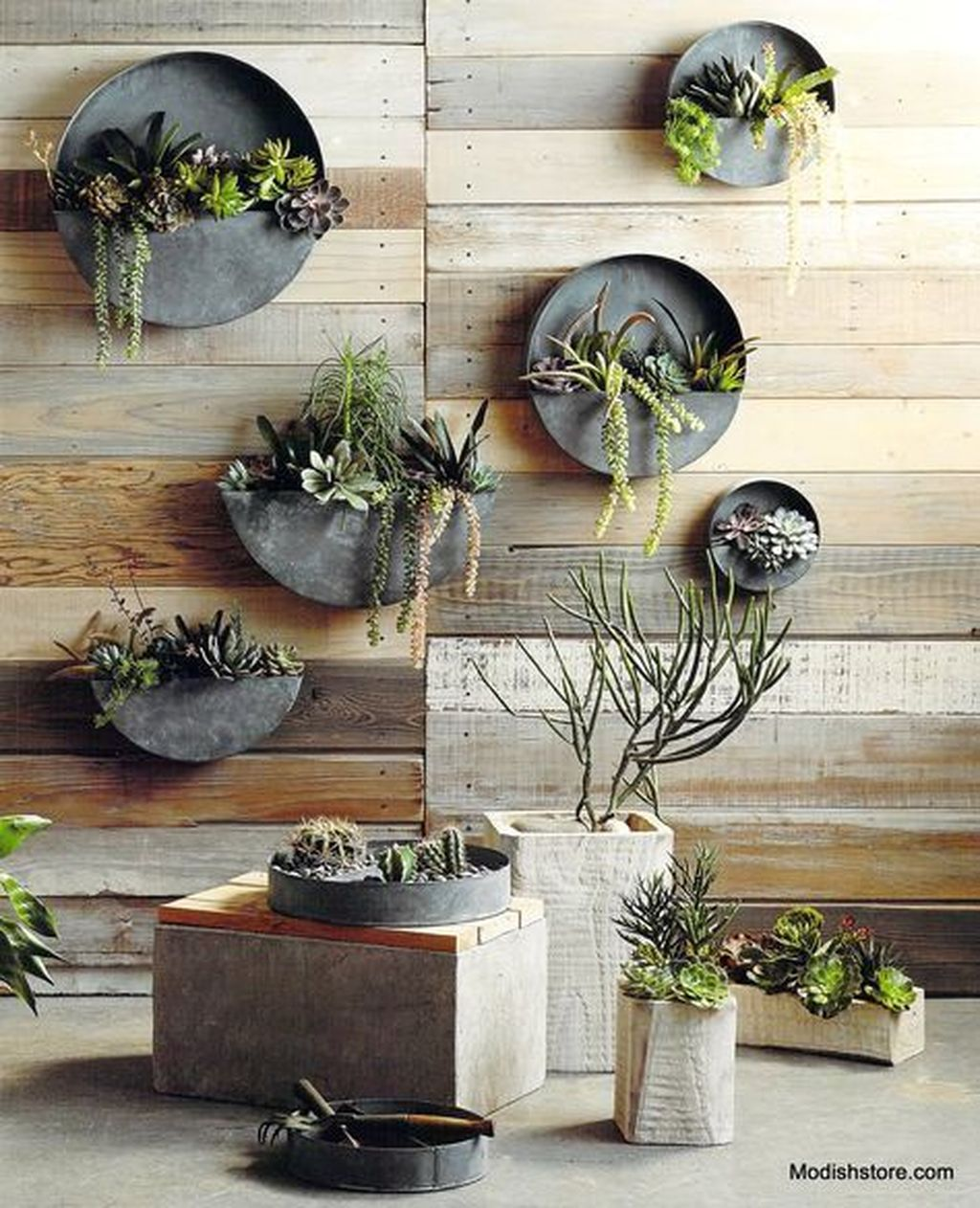 Popular Vertical Garden Wall For Outdoors Decor 19