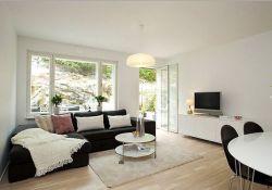 Large Living Room Windows