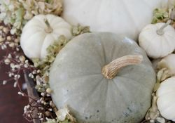 White Pumpkin Fall Decor