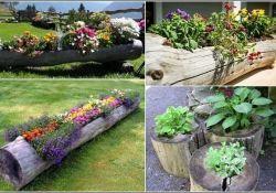 Home And Garden Decor