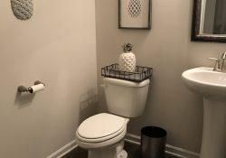 Pineapple Bathroom Decor