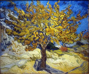 Memoria Narrante, Vincent Van Gogh Il gelso, immagine web