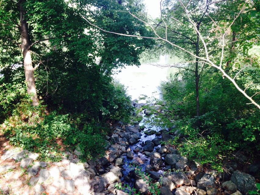 North Creek, Gaithersburg, Maryland