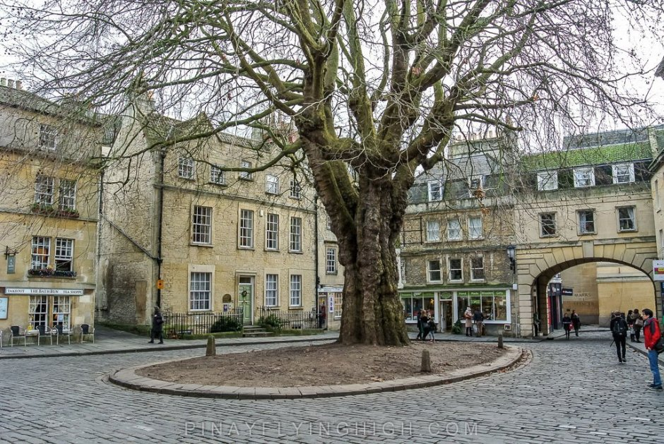 The Hanging Tree in Abbey Green, Bath, England - PinayFlyingHigh.com
