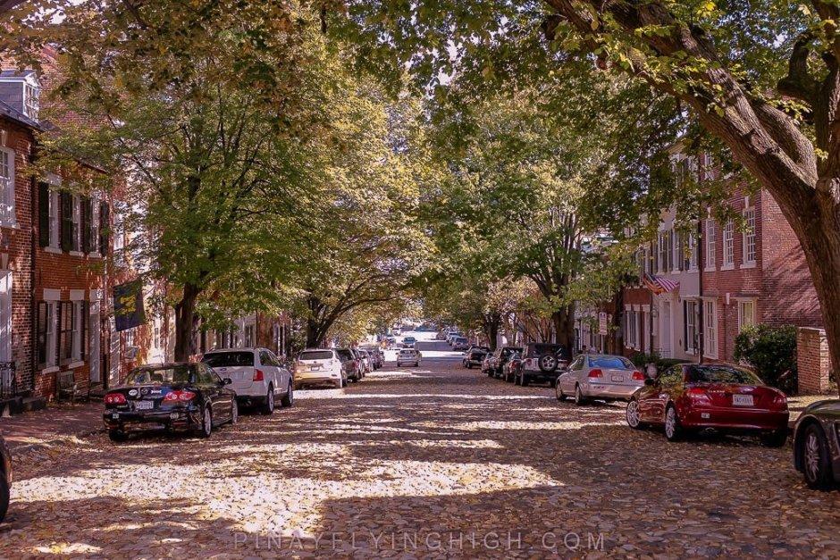 Prince Street, Alexandria - PINAYFLYINGHIGH.COM-202