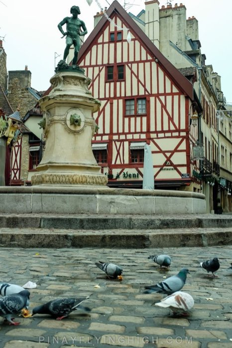 Dijon, France - PINAYFLYINGHIGH.COM-144