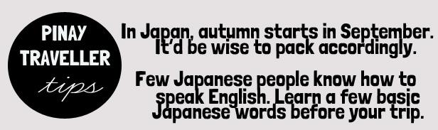 PT tips japan