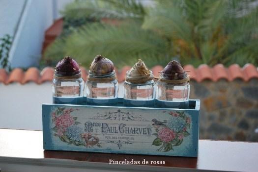 narcisos-bulbos-caja-decoupage-12